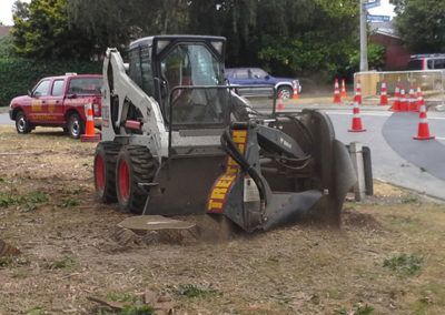 Specialized tree stump removal digger Christchurch Wellington New Zealand